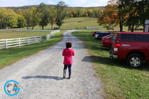 Little Girl on the Farm: Warwick, NY